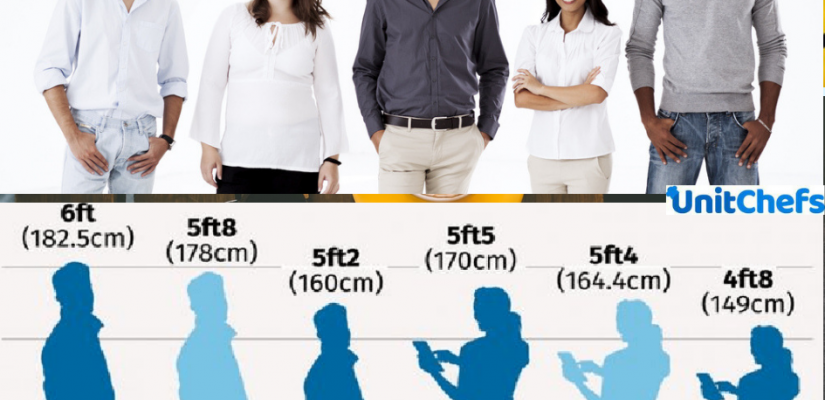 human height