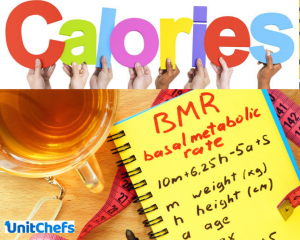 calories and BMR