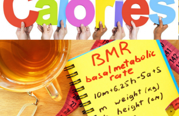 What are Basal Metabolic Rate (BMR) and Resting Metabolic Rate (RMR)